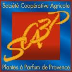 SCA3P